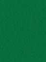 27.INTENSE GREEN Renolit 6110 05